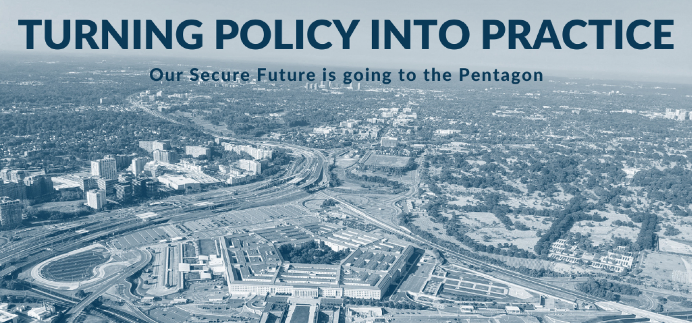 Department of Defense, Turning Policy into Practice, WPS,