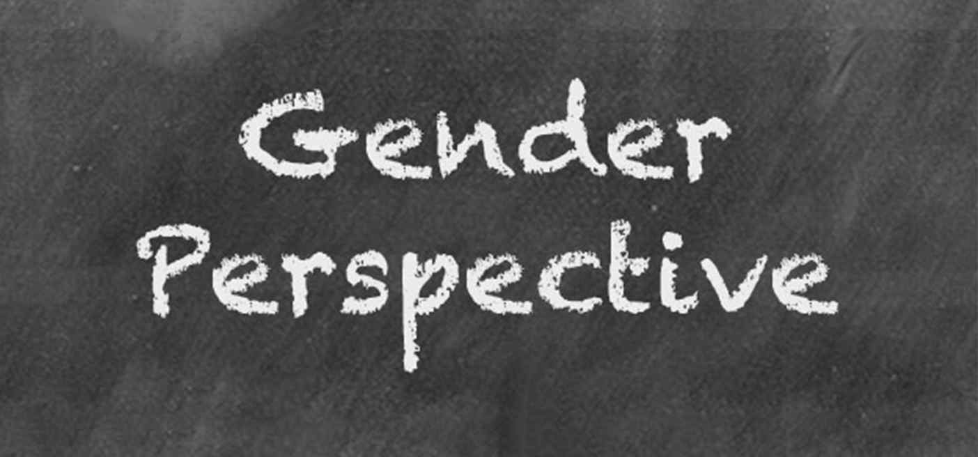 gender perspective wikipedia