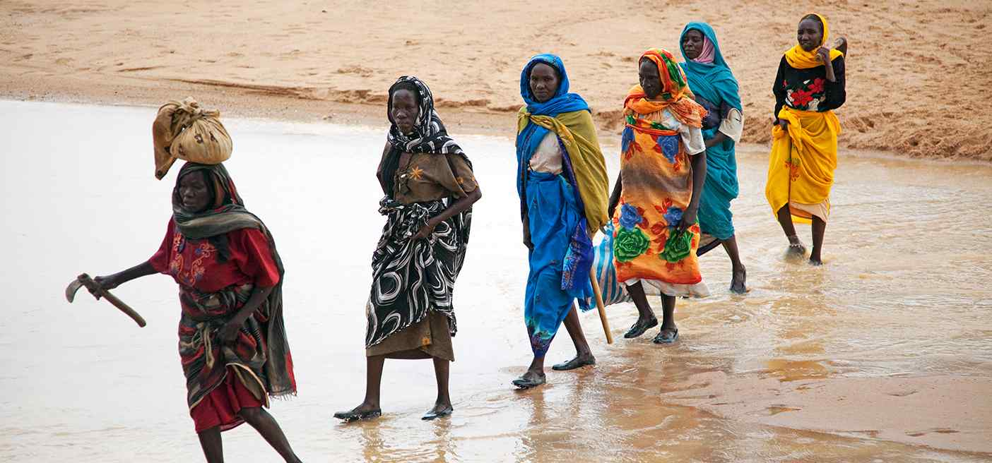 Sudanese Women Collect Fire Wood